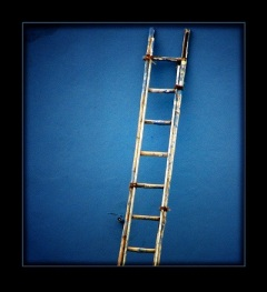LadderOfSuccess 3